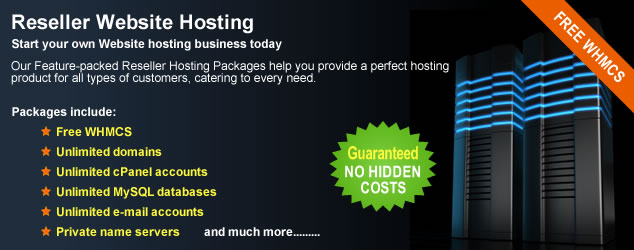 reseller hosting business plan